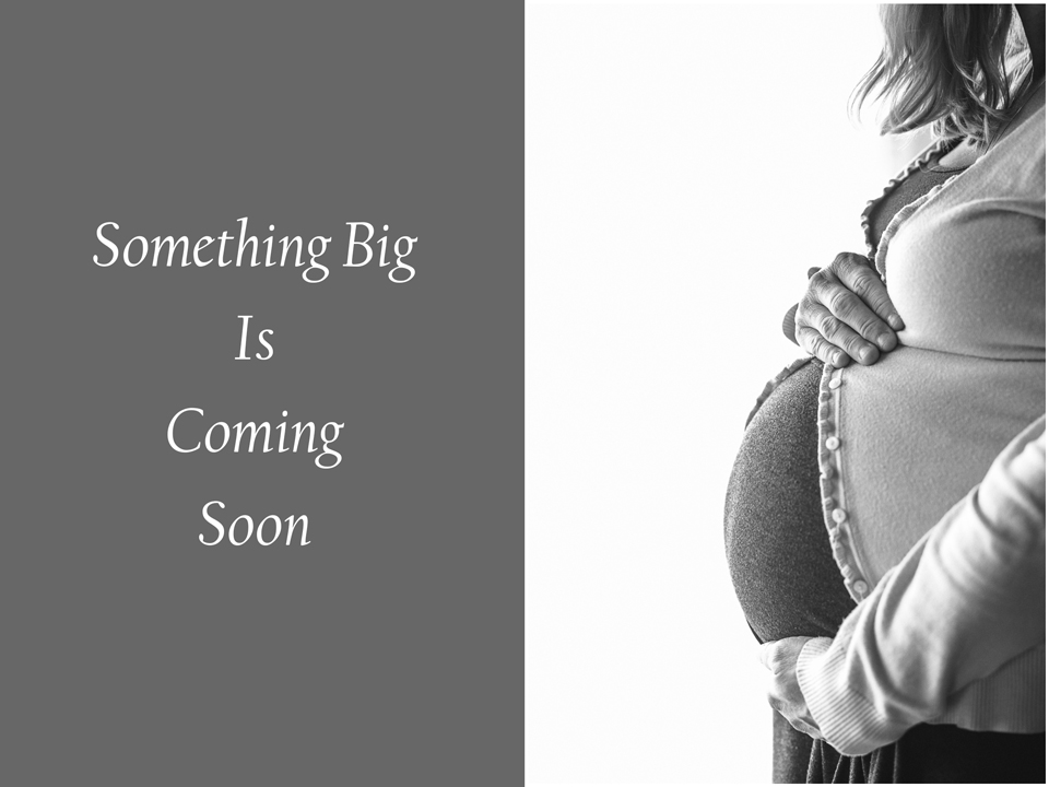 Maternity Photographer Portage WI