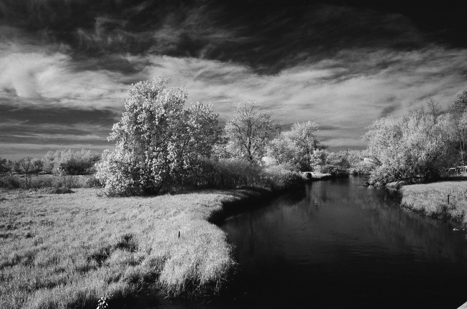 Shooting infrared film central wisconsin film photographer