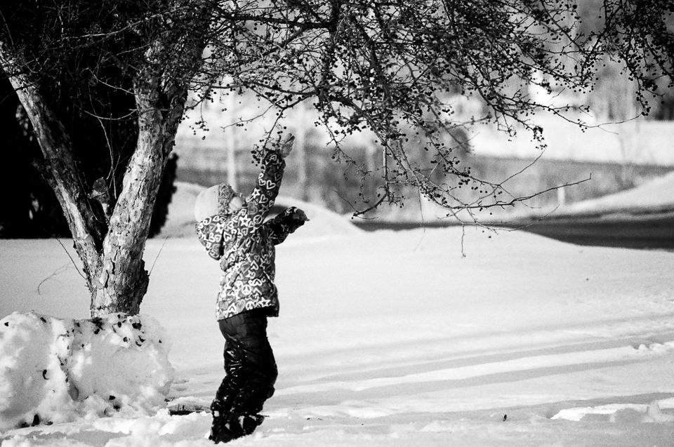 Snow activities in Madison Wisconsin